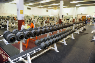 The weight area includes free weights and machines.